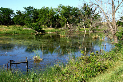 Marsh area along West Fork Nescatunga Creek - eastern Comanche County