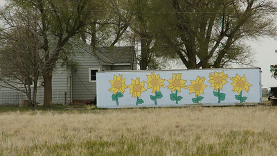 Railroad boxcar on farm west of Ulysses painted with sunflowers