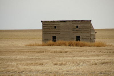 Abandoned wood building in western Greeley County