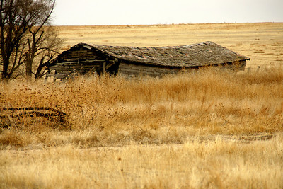 Dilapidated wood building in western Greeley County
