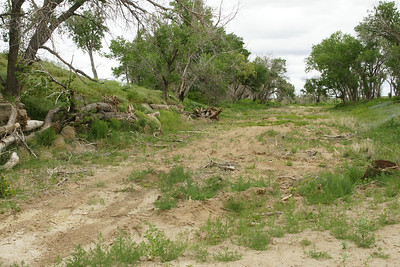 Dry channel of Bear Creek near Saunders on the Kansas Colorado state line.
