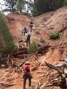 Wilderness Volunteers: 2017 Dark Canyon, Manti-La Sal National Forest Service Trip
