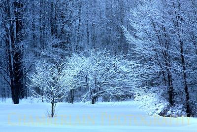 winter 02-2011