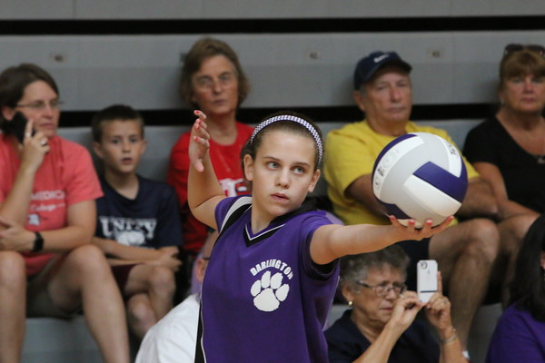 DMS Volleyball 24 Aug 2015