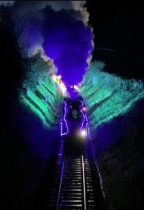 Train of Lights Galmpton