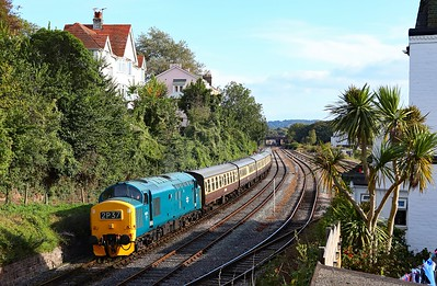 D6975 Goodrington Sidings