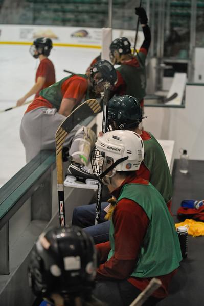 Ming Dynasty Bronze Medal Dartmouth Hockey 2012-199
