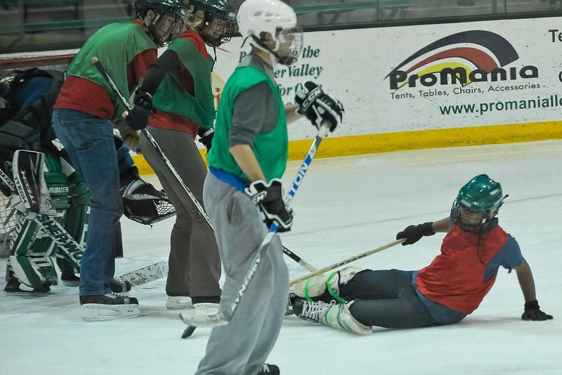Ming Dynasty Bronze Medal Dartmouth Hockey 2012-221