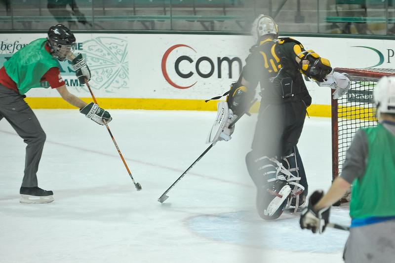 Ming Dynasty Bronze Medal Dartmouth Hockey 2012-136