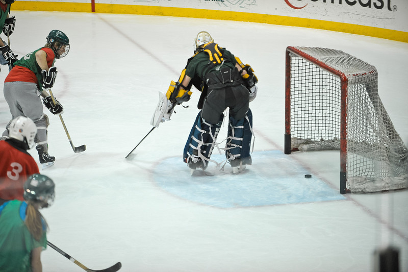 Ming Dynasty Bronze Medal Dartmouth Hockey 2012-134