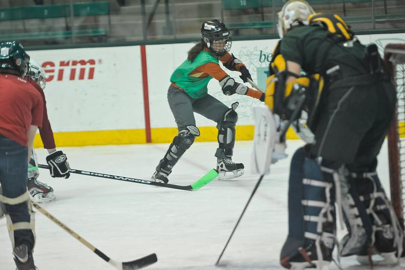 Ming Dynasty Bronze Medal Dartmouth Hockey 2012-129