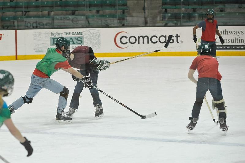 Ming Dynasty Bronze Medal Dartmouth Hockey 2012-201