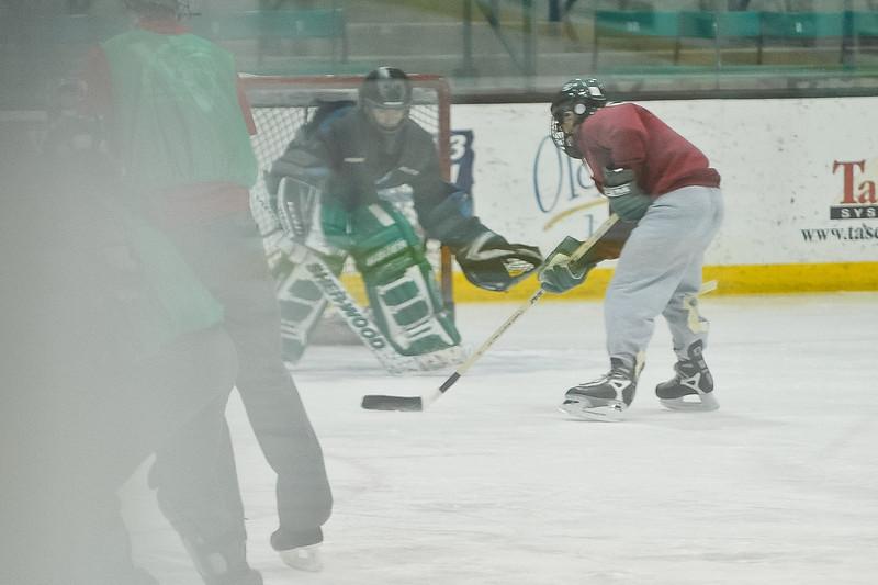 Ming Dynasty Bronze Medal Dartmouth Hockey 2012-165