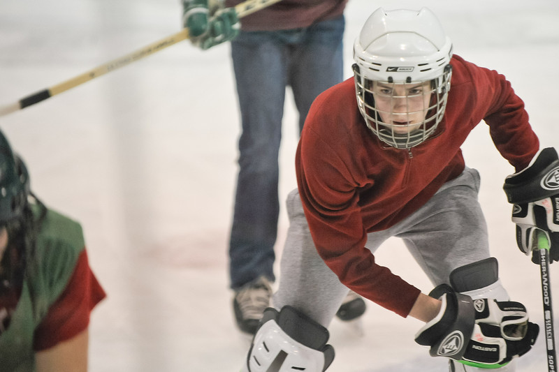 Ming Dynasty Bronze Medal Dartmouth Hockey 2012-137