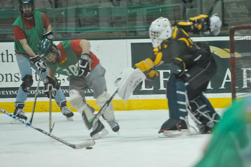 Ming Dynasty Bronze Medal Dartmouth Hockey 2012-186