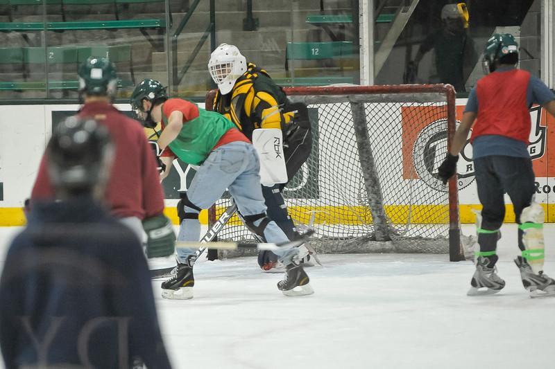 Ming Dynasty Bronze Medal Dartmouth Hockey 2012-202