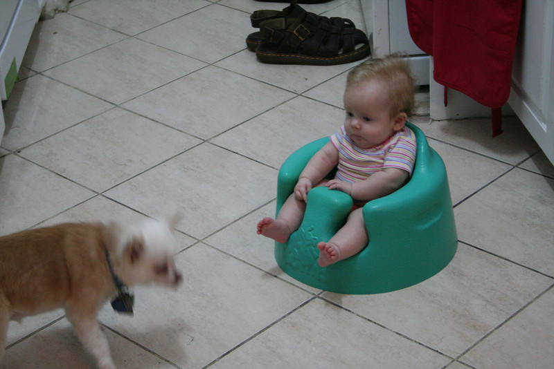 Sitting in my bumbo watching Maizey try to out-cute me (not possible!)