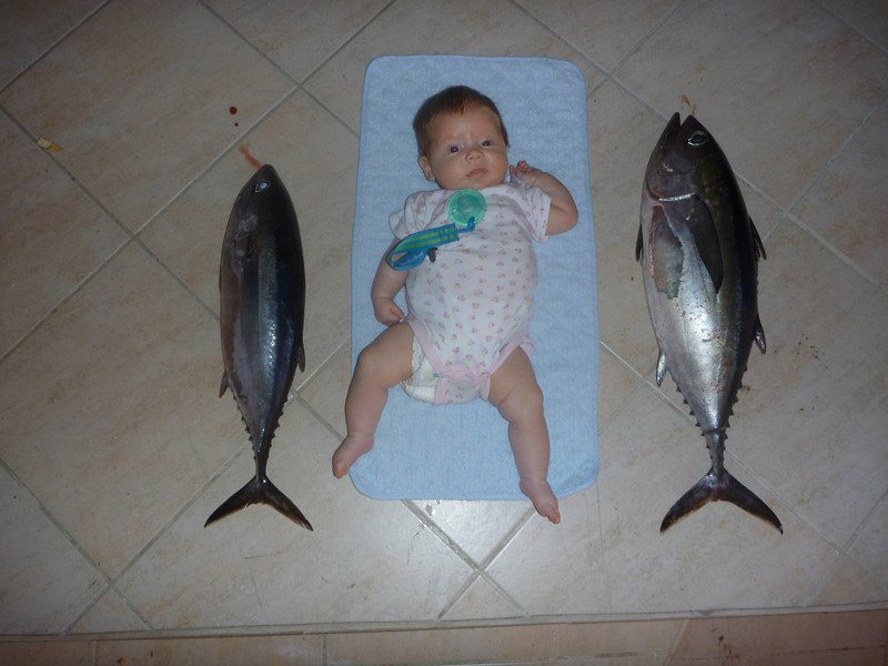Daddy caught some tuna as big as me!