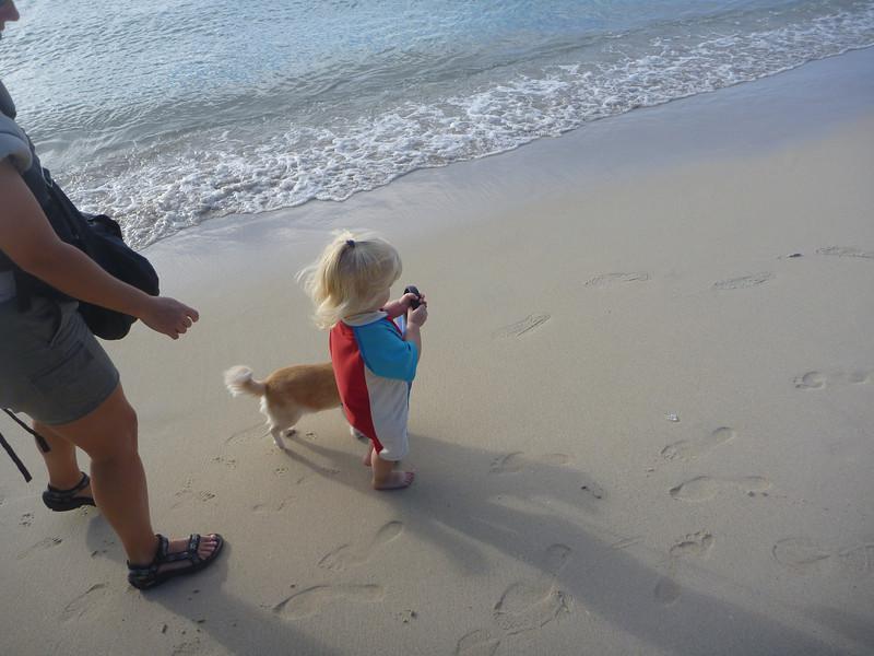 Walking Maizey on Grand Anse beach