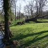 Das vielfach gleiche  hohe Alter der Bäume erfordert laufende Fällarbeiten