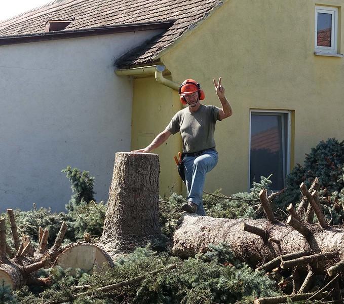 Geschafft !  Ein wenig Stolz ist schon dabei, immerhin war es der erste Baum, den wir  abgetragen haben.