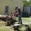 Anschließend machen wir uns an die Arbeit  den Baum so aufzuarbeiten, dass er auch mit einem Kleinanhänger abtransportiert werden kann.