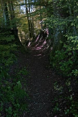 Eine eindrückliche Hohle weist auf die fünfhundert Jahre alte Wegstrecke hin. (rückwärts blickend)