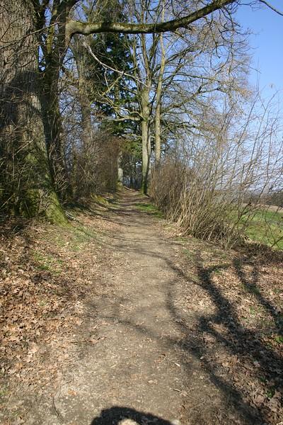 Richtung Schwand, Krete zwischen Rötelberg und Blochwil