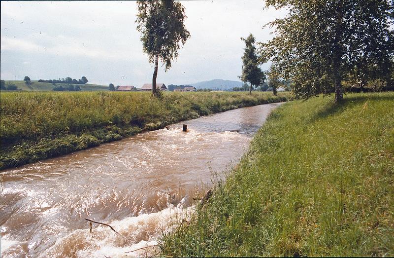 Dias2_40 Wigger vor Alberswil 1969