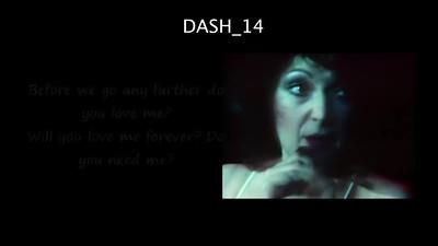 DASH -14