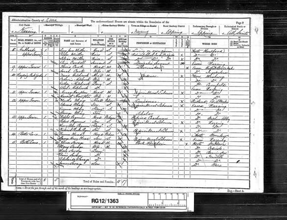 1891 census for the Miller girls in Hertford