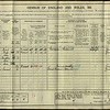 1911 Census for the Wilf Spencer household