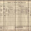 1911 Census for Job Bird