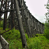 Another quick stop to check out the Gillahina Railroad Trestle.
