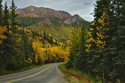 Park Road in Autumn