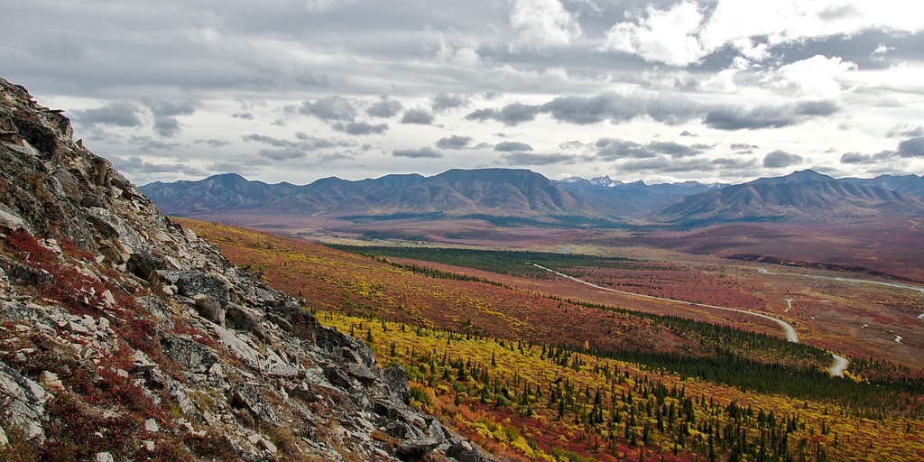 The Park Road winds through the Savage River Valley during peak fall foliage. Red and yellow ground-cover adorn the landscape.