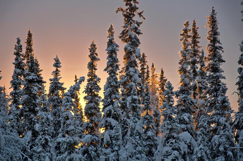 "December - Winter ""Sunrise"""