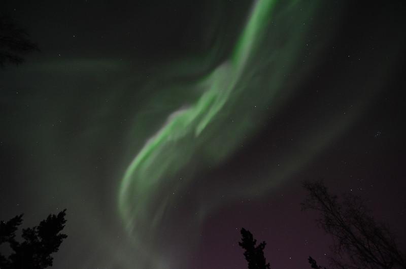 Aurora borealis directly overhead. Camera settings:  Camera: Nikon D7000 ISO: 1600 f/stop: 2.8 shutter speed: 1.6 second