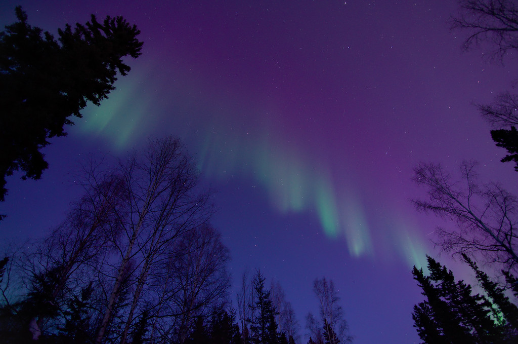 Aurora from our Driveway