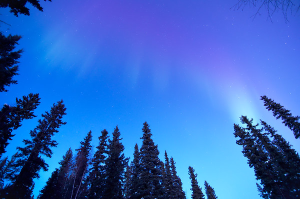 The stars were barely visible when the aurora first came out