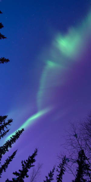 Aurora in Twilight