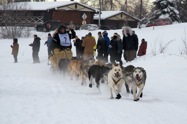 Kyla Durham and team fresh out of the gate during the 2012 Yukon Quest. The 1000 mile race alternates start and finish between Fairbanks and Whitehorse every year.