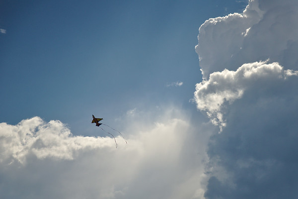 Kite flying at Chena Lake Recreation Area