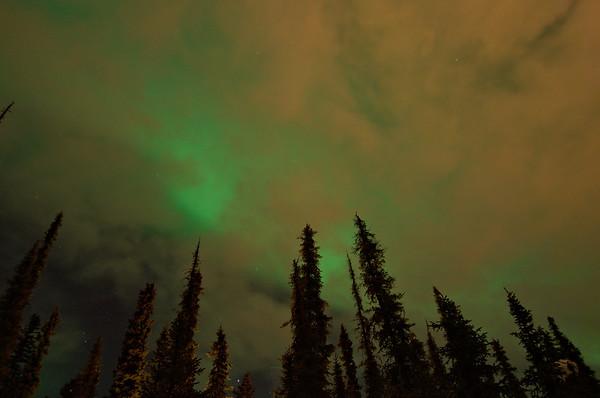 Aurora borealis on an overcast night over Fairbanks, Alaska