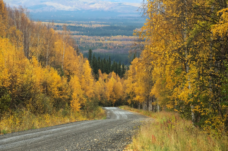 Looking down the road up Ester Dome in the fall.