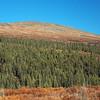Ridge near Nome Creek
