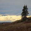 Along Quartz Creek Trail