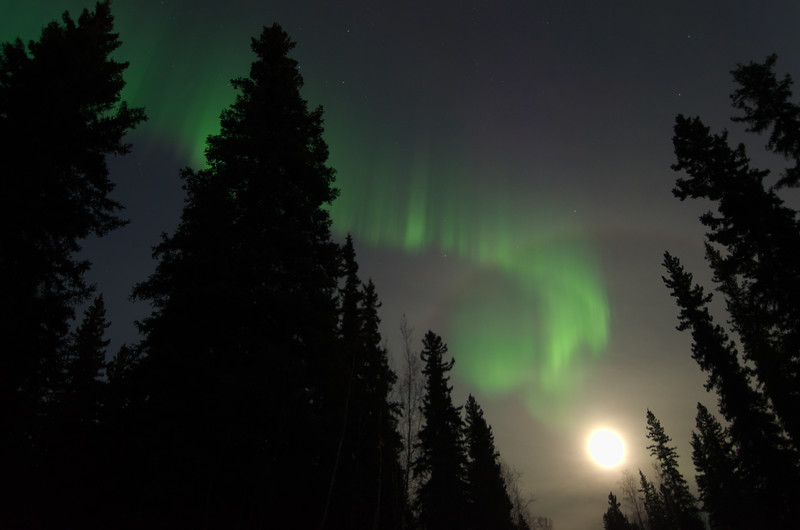 September - halo and aurora