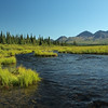 Creek on the Denali Highway