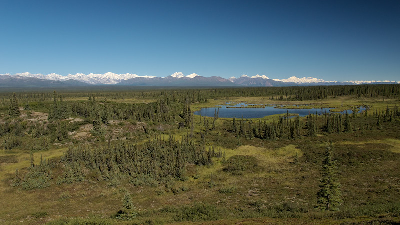 From the Denali Highway